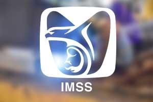SEGURO SOCIAL IMSS